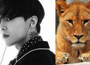 Fan tặng G-Dragon nguyên một chú sư tử nhân sinh nhật tuổi 30