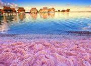 Bí ẩn những bãi biển kỳ lạ nhất thế giới