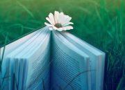 Mọt sách để tôi dạy cậu cách yêu